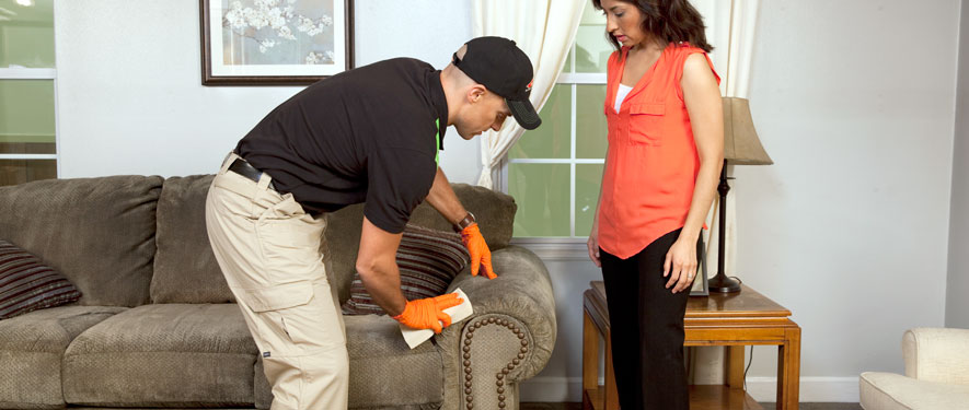 Frankfort, IN carpet upholstery cleaning