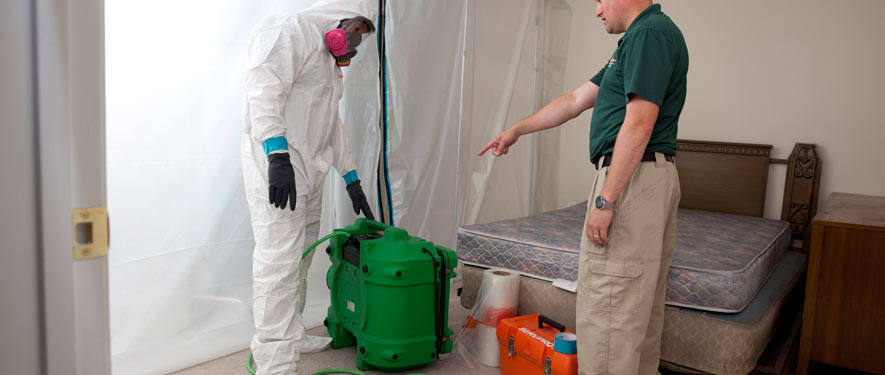 Frankfort, IN mold removal process